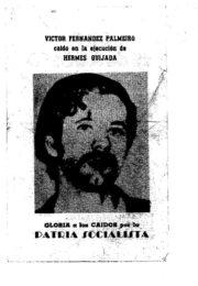 thumbnail of Victor Fernandez Palmeiro