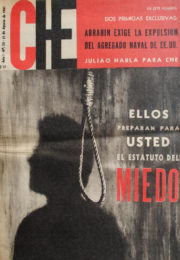 thumbnail of Che N 20