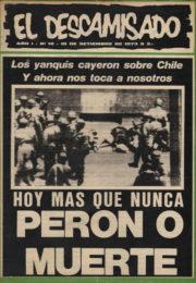 thumbnail of El Descamisado n 18