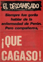 thumbnail of El Descamisado n 28