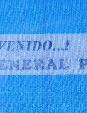 thumbnail of bienvenido-peron-brazalete