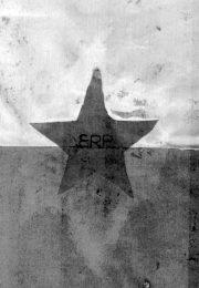 thumbnail of bandera-del-erp